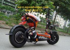 xe đạp điện Bò Điên
