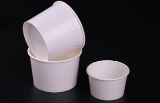 double-membrane-paper-bowl-03.jpg